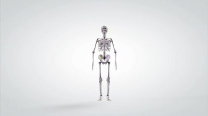موشن گرافیک علمی چرخش آناتومی اسکلت انسان