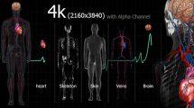 مجموعه ویدیوی موشن گرافیک پزشکی از بدن انسان