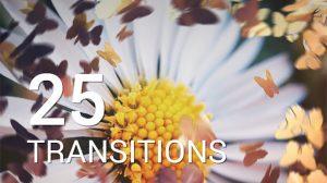 پروژه افترافکت مجموعه 25 ترانزیشن با پرواز پروانه