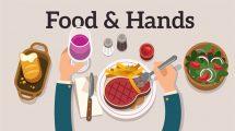 پروژه افترافکت تیزر تبلیغاتی Food & Hands Explainer