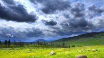 فوتیج ویدیویی تایم لپس منظره طبیعت