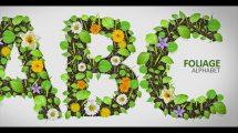 پروژه افترافکت نمایش حروف الفبای انگلیسی با گل و گیاه