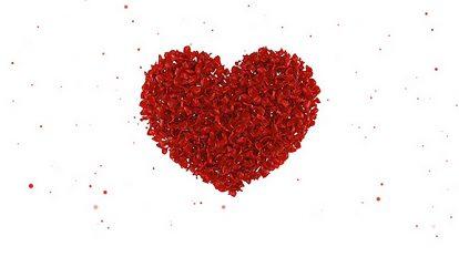 پروژه افترافکت آلبوم عروسی با گل های رز