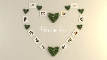 پروژه افترافکت عکس ولنتاین Valentine Photo