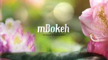 مجموعه فوتیج ویدیویی نور بوکه mBokeh