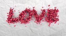 ویدیوی موشن گرافیک افتادن گلبرگ های رز روی زمینه سفید