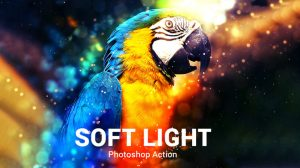 اکشن فتوشاپ Soft Light با افکت نوری پیشرفته