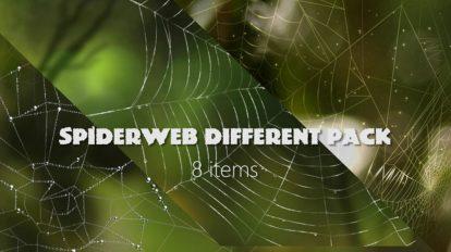 مجموعه ویدیوی موشن گرافیک تار عنکبوت Spider Web Background Pack
