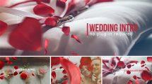 پروژه افترافکت افتتاحیه عروسی Wedding Intro
