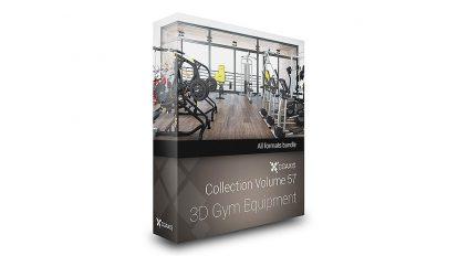 مجموعه مدل سه بعدی تجهیزات بدنسازی CGAxis Models 57 3D Gym Equipment