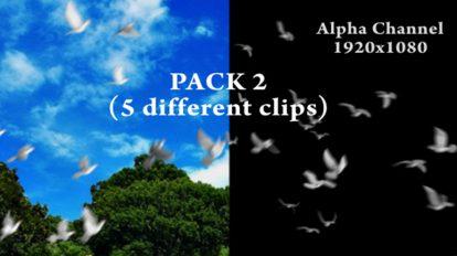 مجموعه ویدیوی موشن گرافیک پرواز کبوترها Flying Doves Pack Vol.2