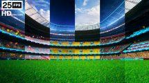 مجموعه ویدیوی موشن گرافیک ورزشی Flying on Grass in Stadium