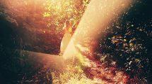 پروژه افترافکت اسلایدشو با افکت نور Shine Reflective Slideshow