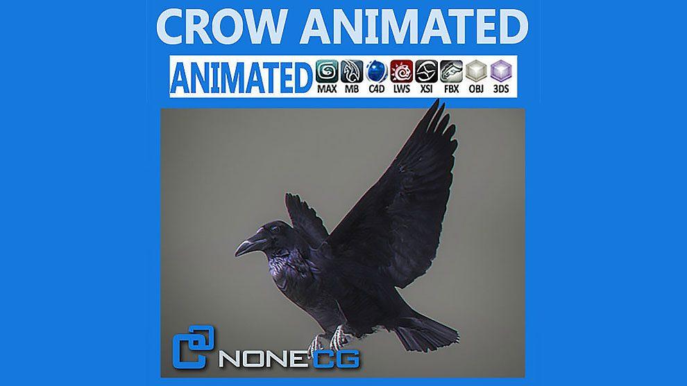 مدل سه بعدی و انیمیشن کلاغ Animated Crow