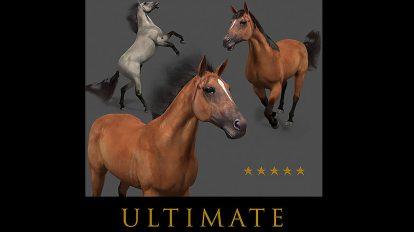مجموعه مدل سه بعدی اسب Ultimate Horse Collection