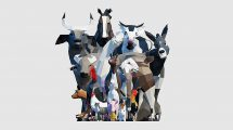 مجموعه مدل سه بعدی حیوانات مزرعه با استایل Low Poly