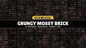 مجموعه تکسچر آجری خزه دار گرانج Grungy Mossy Brick Vol.1