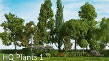 مجموعه مدل سه بعدی گیاهان Vrayc4d HQ Plants Vol.1
