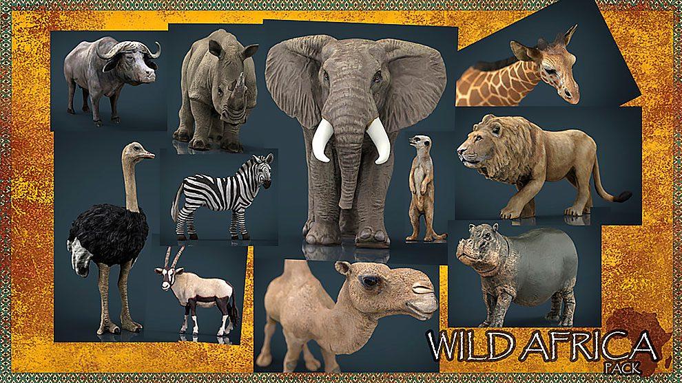 مجموعه مدل سه بعدی حیات وحش آفریقا Wild Africa Pack