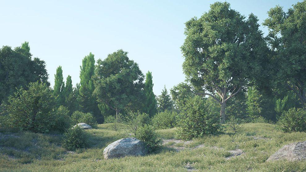 پلاگین سینمافوردی 3DQuakers Forester ابزار ساخت محیط طبیعی و جنگل