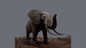 مدل سه بعدی فیل Elephant
