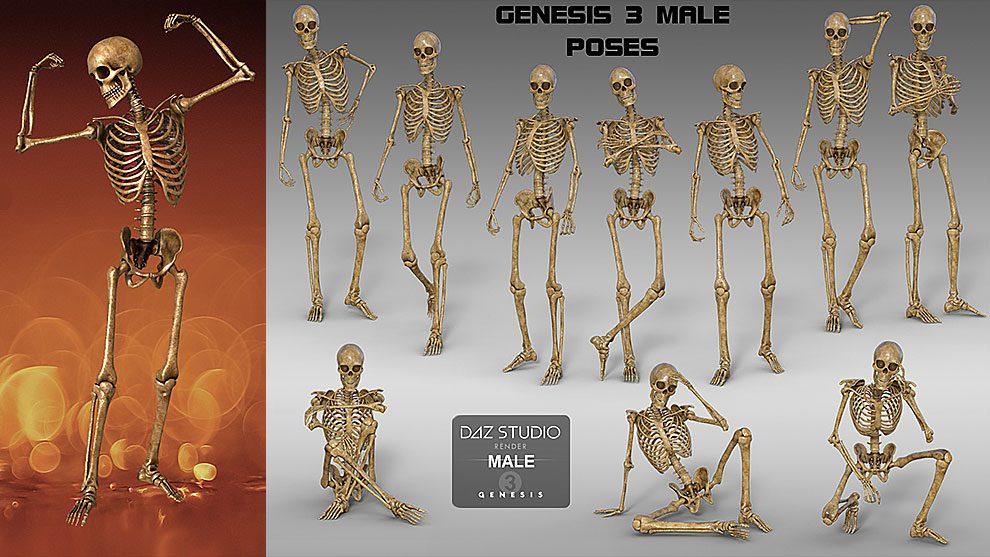 مجموعه مدل سه بعدی اسکلت Midnight Skeleton Genesis 3 Bundle