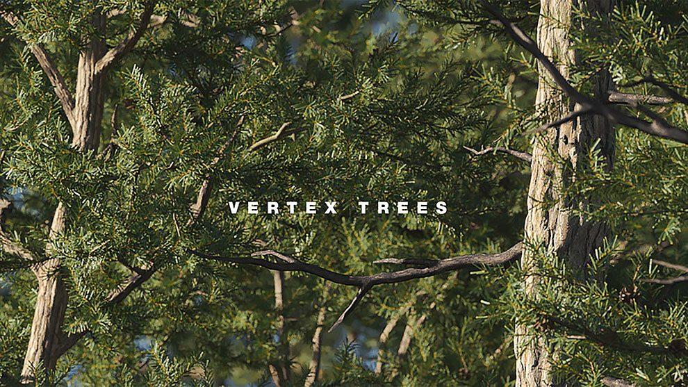مدل سه بعدی واقعگرایانه کاج اسکاتلندی Scots Pine 01