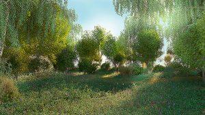صحنه آماده سه بعدی جنگلی 3D Scene Forest Glade