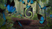 پروژه افترافکت نمایش لوگو با پرواز پروانه Butterfly Logo Opener