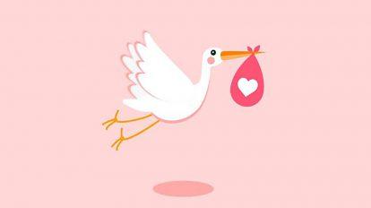پروژه افترافکت افتتاحیه تولد کودک Stork Baby Birthday