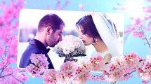 پروژه افترافکت اسلایدشو عروسی با گل Wedding Flowers Slideshow