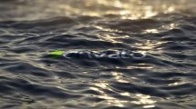 پروژه افترافکت نمایش لوگو روی سطح اقیانوس Ultra Realistic Ocean Logo