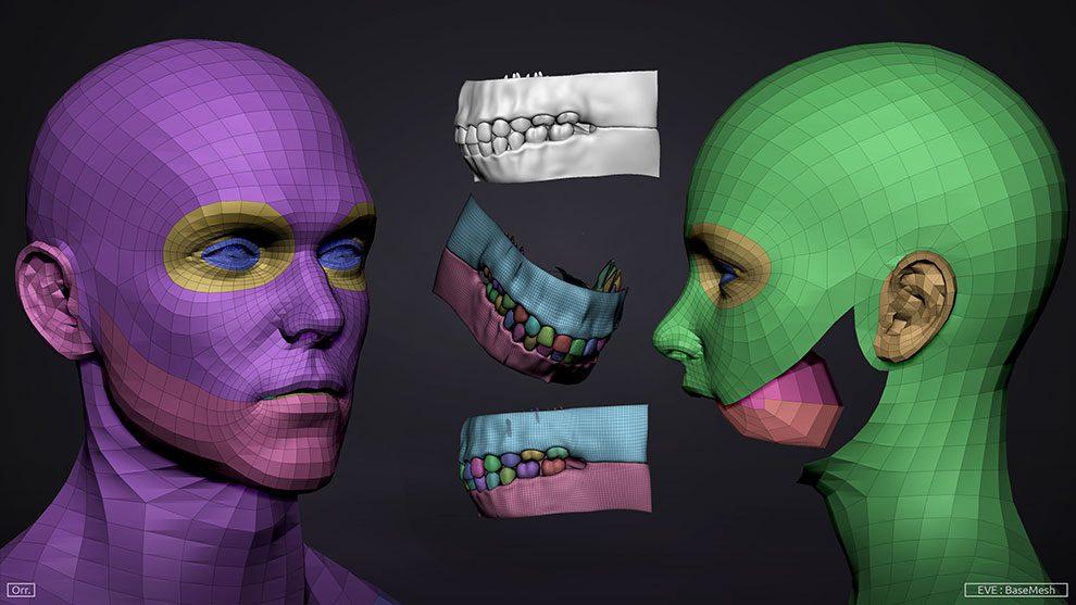 مجموعه مدل سه بعدی مش زن و مرد Basemesh Set Adam & Eve