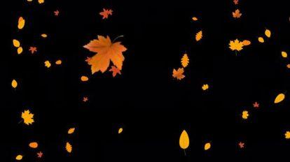 ویدیوی موشن گرافیک افتادن برگ های پاییزی