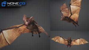 مدل سه بعدی خفاش خون آشام Vampire Bat