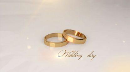 پروژه افترافکت اسلایدشو عروسی Wedding Day