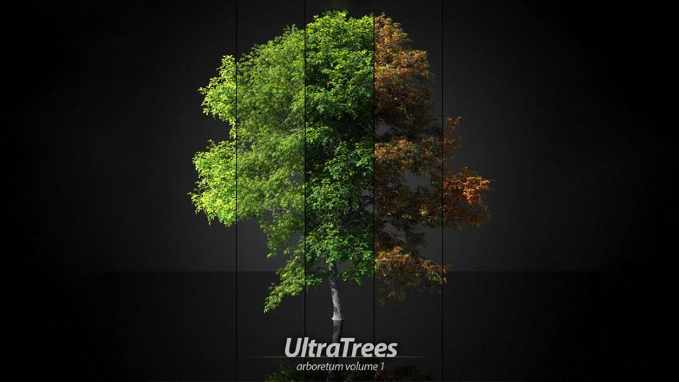 مجموعه مدل سه بعدی درخت Ultratrees Arboretum 1