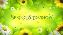 پروژه افترافکت اسلایدشو بهاری Spring Slideshow