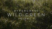 مجموعه مدل سه بعدی علف و چمن Vertex Library Hypergrass