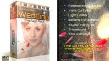 مجموعه فوتیج پوشش متحرک برای عروسی Wedding Overlays Pack