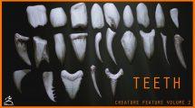 مجموعه براش دندان برای زیبراش Zbrush 24 Assorted Teeth