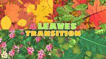 مجموعه فوتیج ترانزیشن برگ Leaves Transitions Pack 4