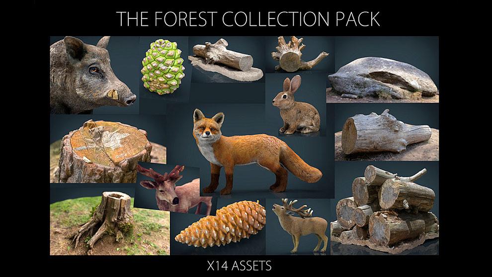 مجموعه مدل سه بعدی اجزای جنگل The Forest Collection Pack