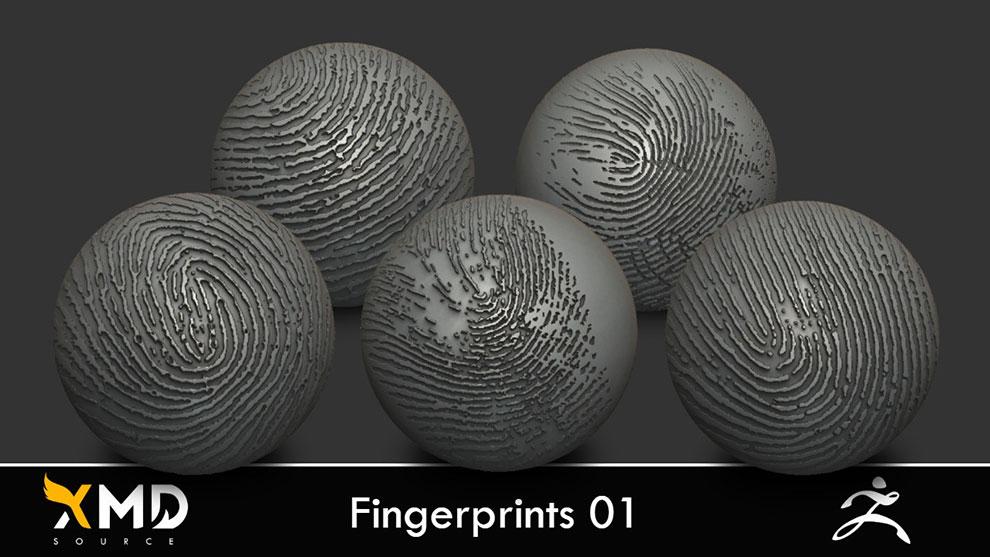 مجموعه براش زیبراش اثر انگشت ZBrush Brushes Fingerprints 1