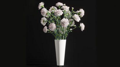 مدل سه بعدی گلدان Carnation 2