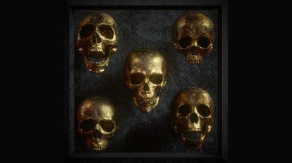 مجموعه مدل سه بعدی جمجمه انسان 3D Skull Model Pack Vol 1