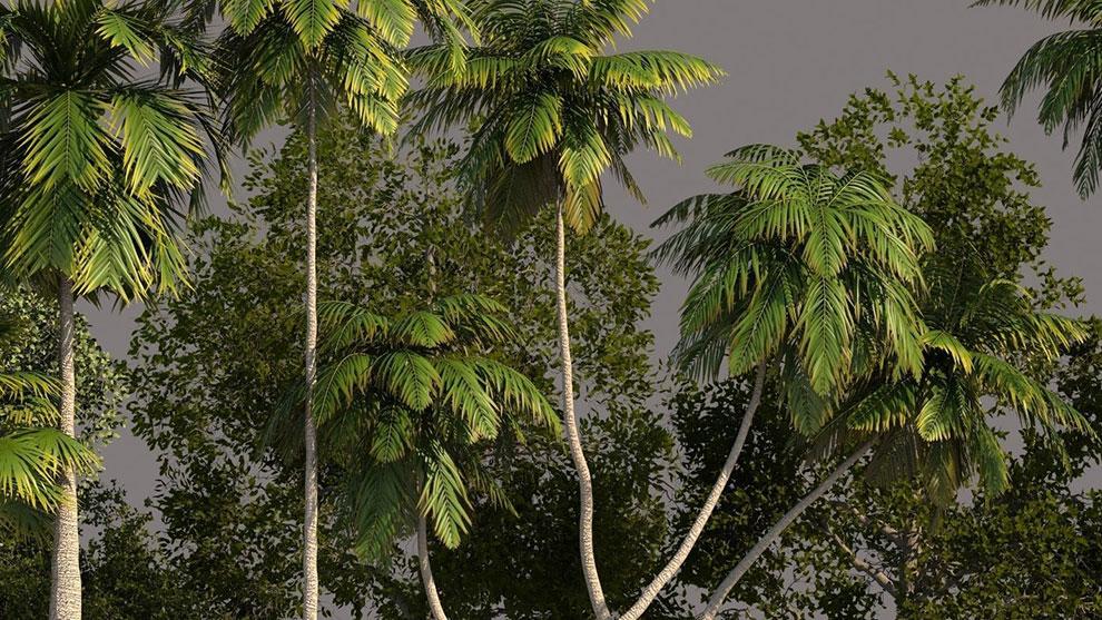 مجموعه مدل سه بعدی درخت Tree Pack 01