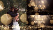 پروژه افترافکت افتتاحیه مراسم عروسی Wedding