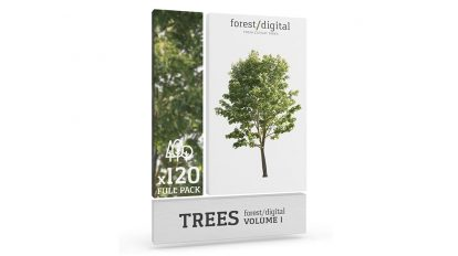 مجموعه تصاویر درخت Forest Digital Trees Vol 1