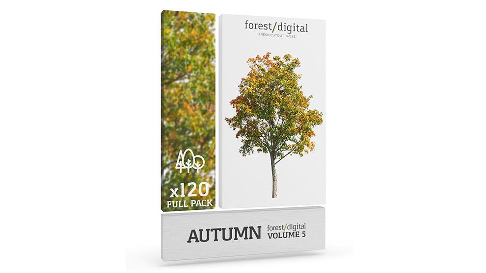مجموعه تصاویر درخت پاییزی Forest Digital Trees Vol 5